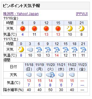 11-16天気予報